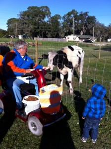 Dad, Caleb and Holstein
